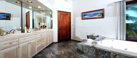 Master bathroom with sunken bath